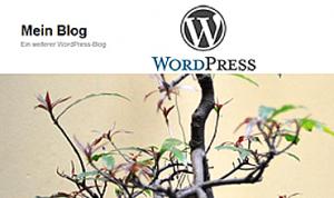 WordPress schlägt alle