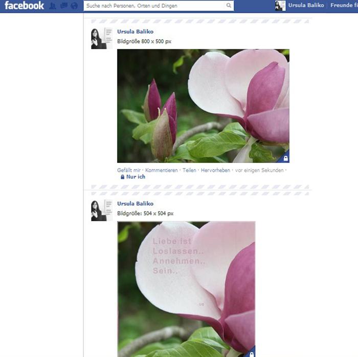 Facebook Chronikbildgroessen im Vergleich