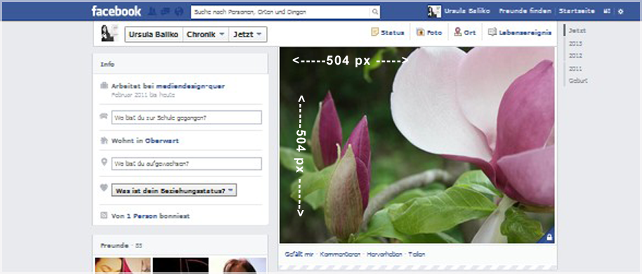 Facebook Chronikbild