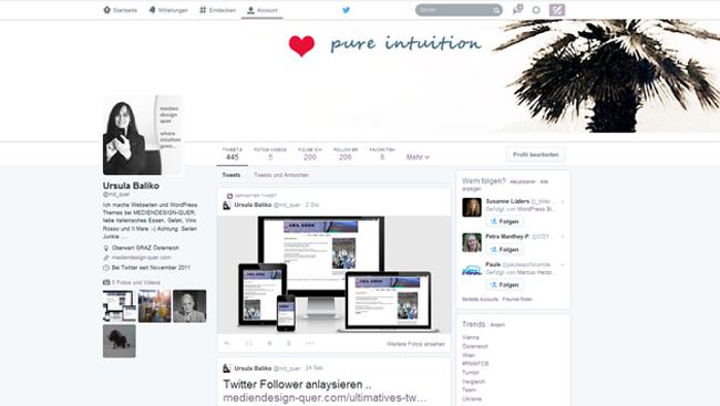 Das neue Twitter Design