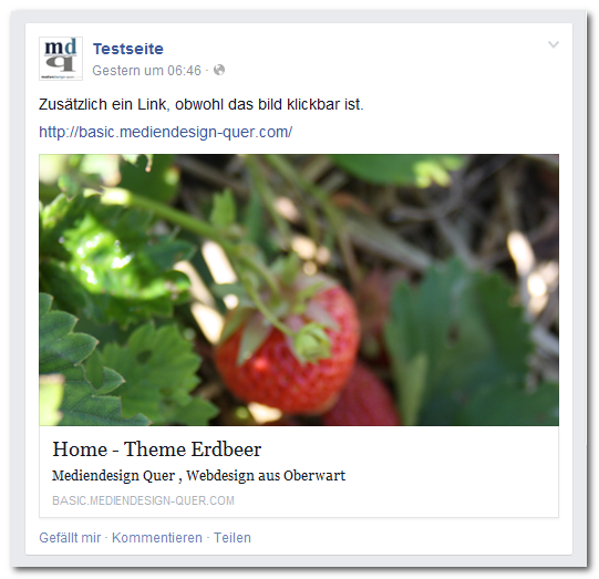 Newsfeed Erdbeer