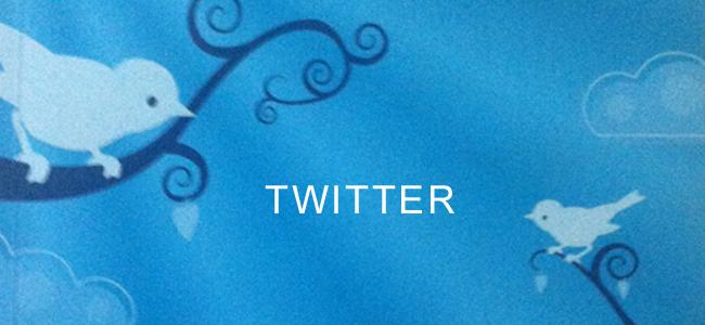 Twitter für Starter