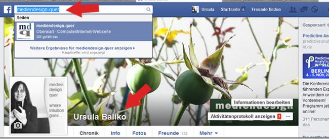 Facebook Suche