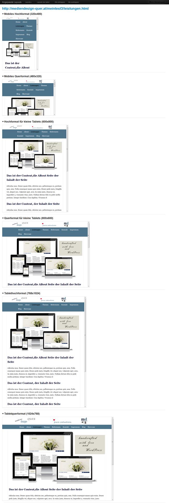 Webdeveloper Tool Firefox
