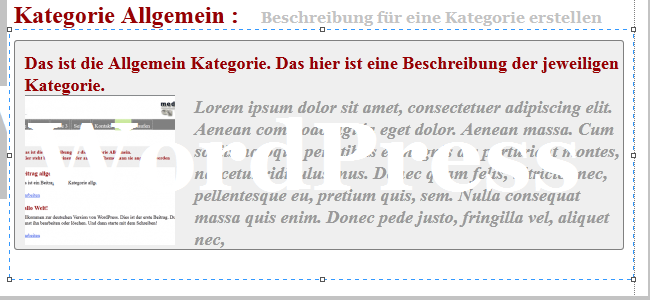 wordpress kategorie