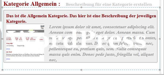 wordpress kategorie