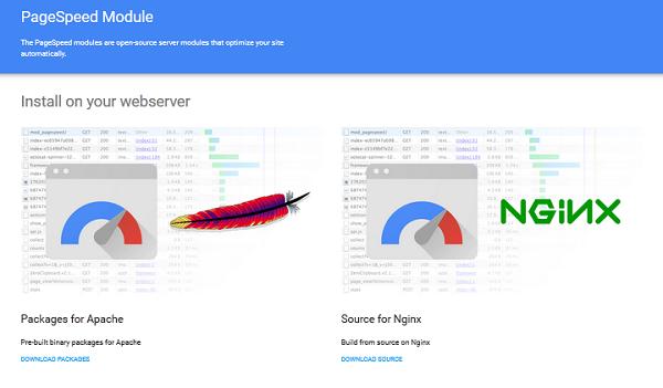 page-speed-module-google