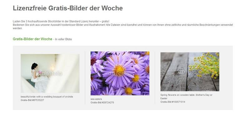 lizenzfreie-gratis-bilder-fotolia