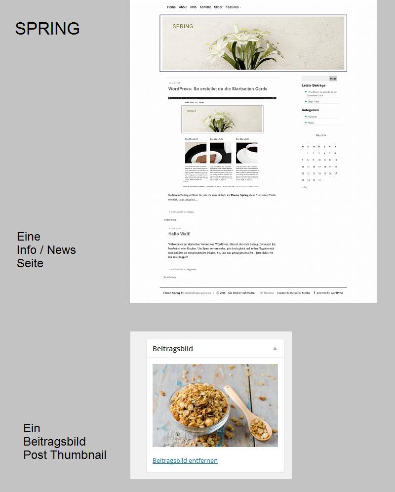 wordpress-theme-spring-info-seite