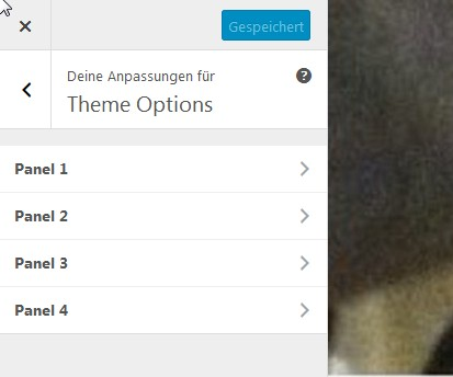 wp-seventeen-theme-options