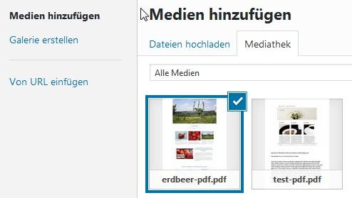 wp-mediathek-pdf-vorschaubild