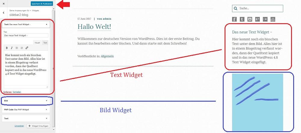 text-widget-live