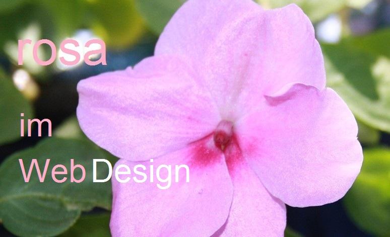 webdesign-und-rosa