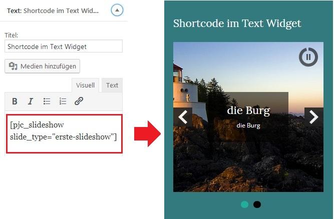 shortcode-textwidget-pinguin-02