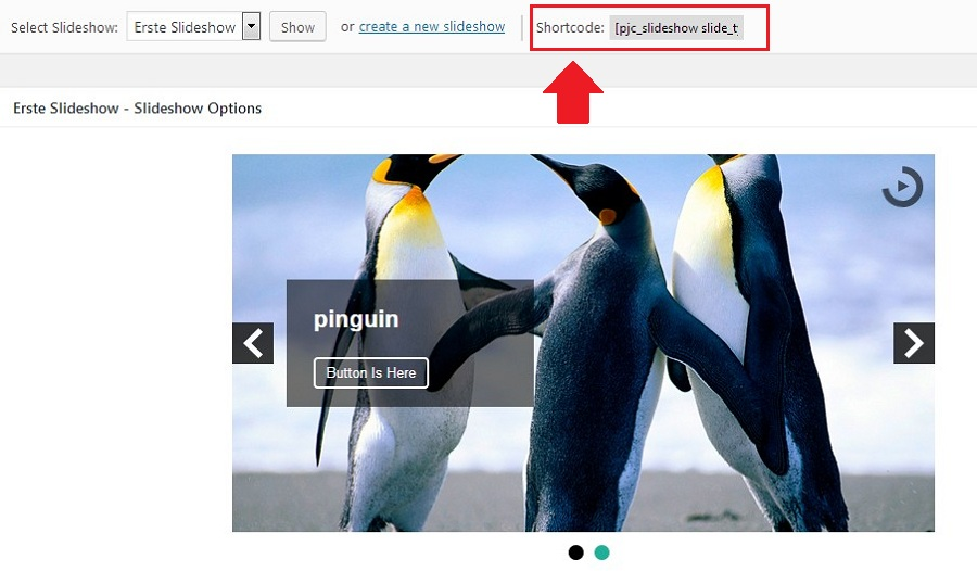 slideshow-pinguin