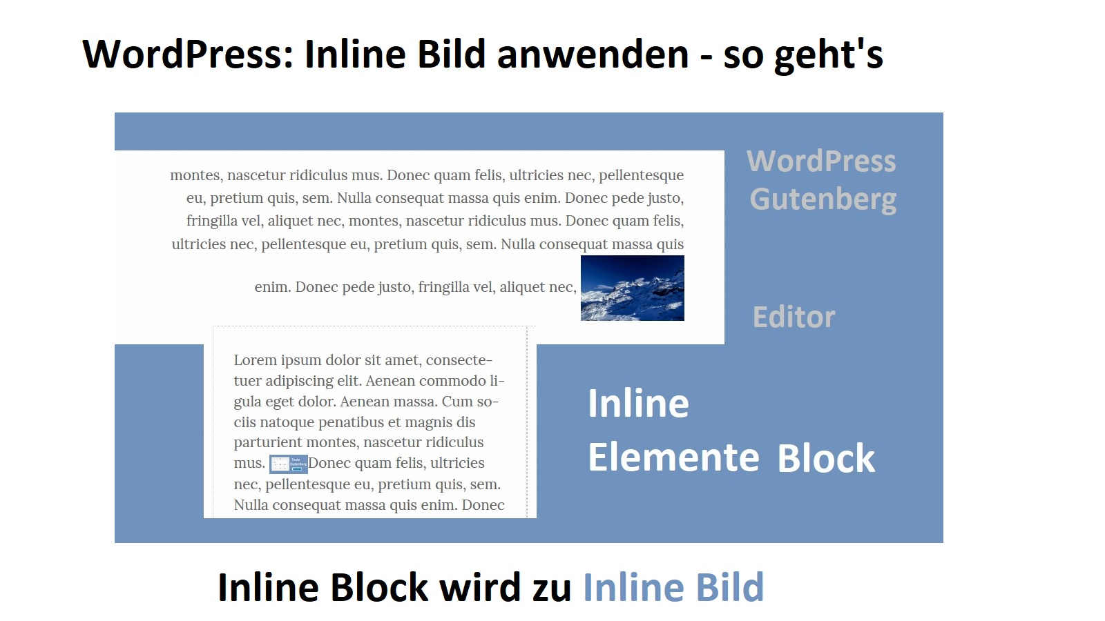 wordpress-inline-bild