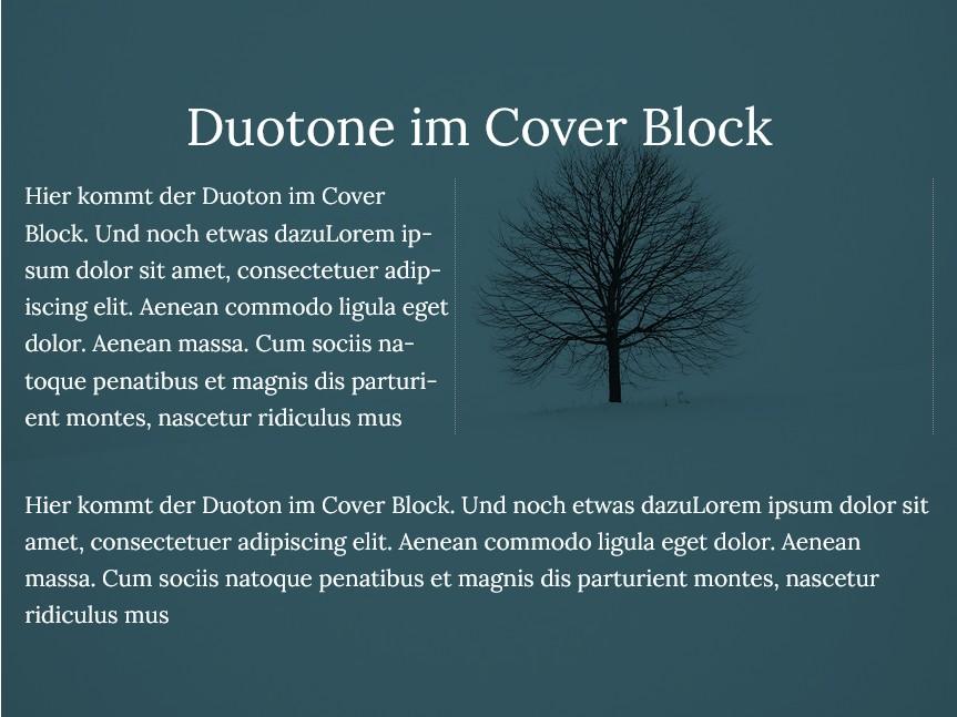 duotone-im-cover-block-01